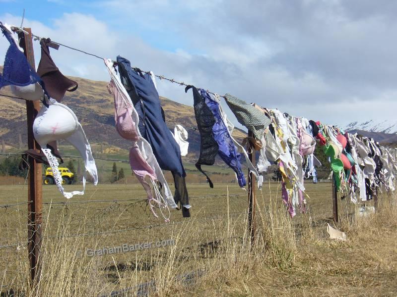 Mammary support garments blowing in the wind, near Cardrona, New Zealand