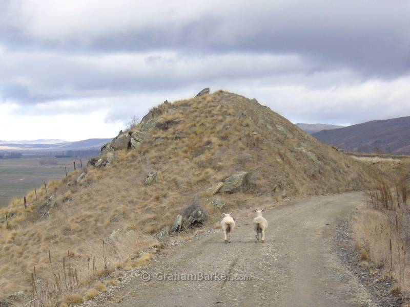 Other walkers on the trail, Otago Central Rail Trail, New Zealand