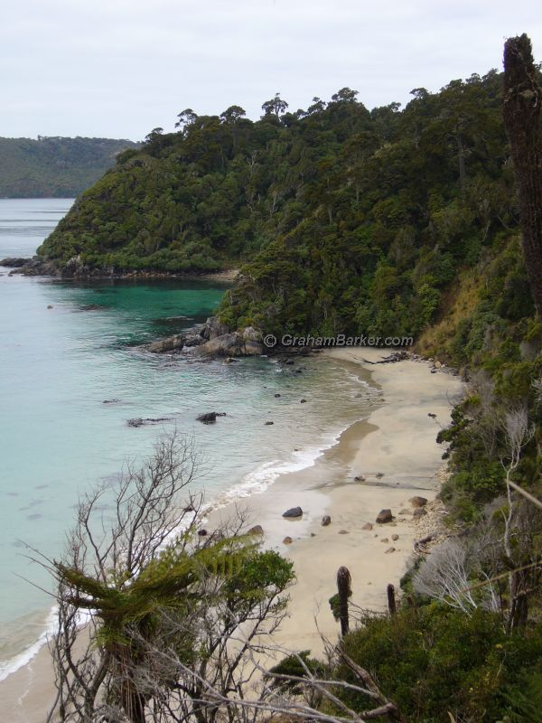 Beach view from the Rakiura Track, Stewart Island, New Zealand