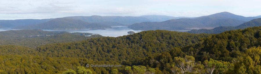 View from high point of the Rakiura Track, Stewart Island, New Zealand
